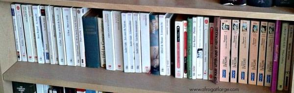 French books shelf