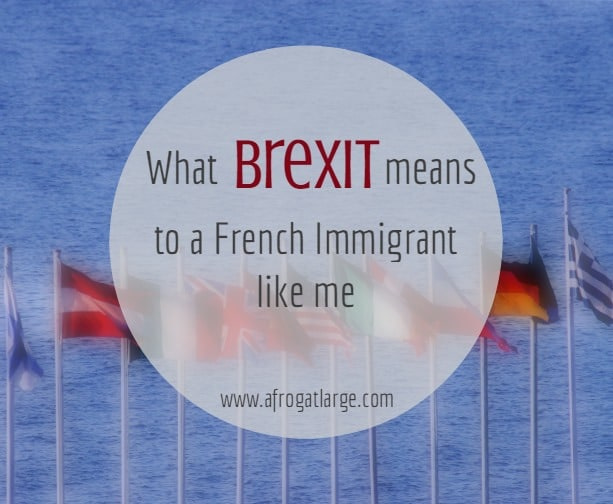 French immigrant view on brexit